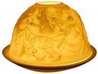 Candle Holder - Cat Family Glow Dome