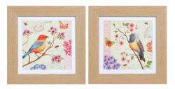 Framed Wall Art - Colourful Birds Set Of 2