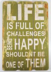 Wooden Wall Art - Life Happy Sign Green