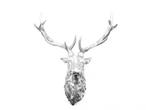 Metal Wall Art - Large Ruffle Stags Head - Silver
