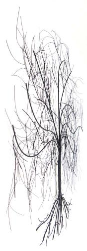 art trees woodland metal wall art metal wall art large oak