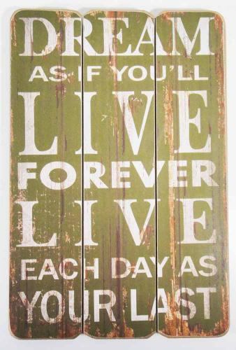 Wooden Wall Art - Dream, Live Sign Green