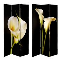 Room Dividers / Canvas Wall Art